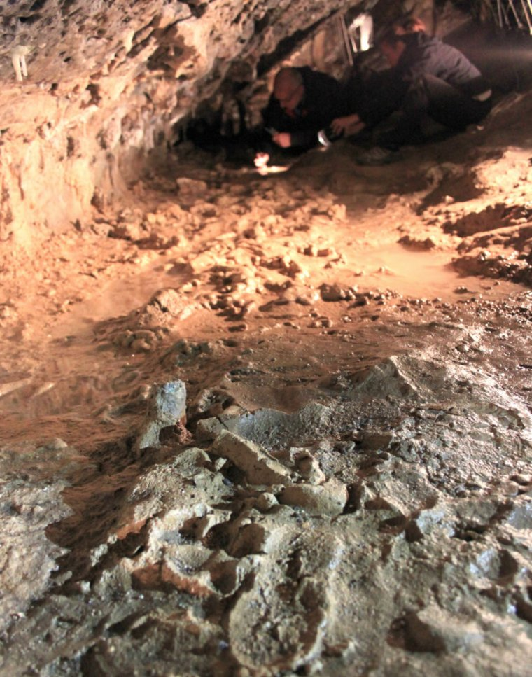 Photo of archaeologists studying ancient footprints.