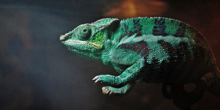 Easy-to-make thermal chameleon fades into the background